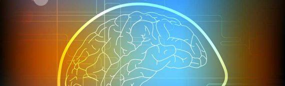 An Integrative Approach to Neurodegenerative Conditions